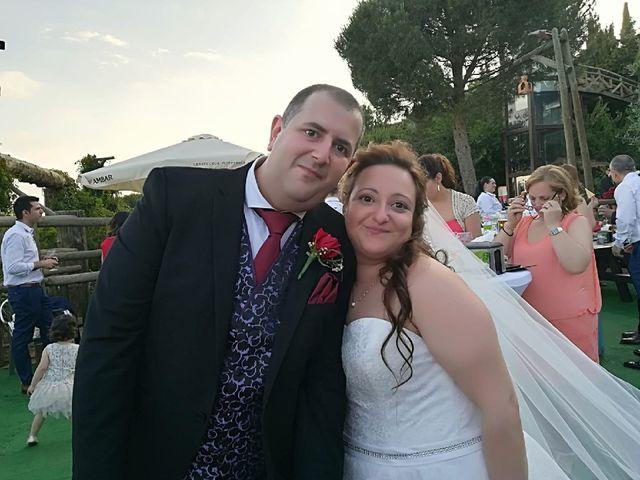 La boda de Jose y Carol en Villarrubia De Los Ojos, Ciudad Real 5
