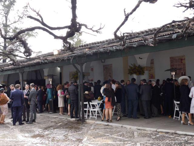 La boda de Jesús García Paz y Beatriz en Jerez De La Frontera, Cádiz 9