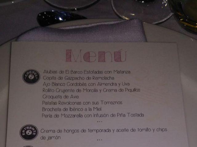 La boda de Raúl y Amparo en Barco De Avila, Ávila 4