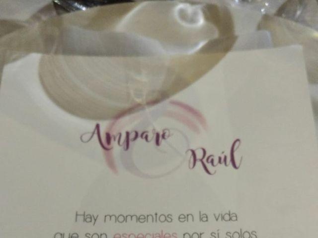 La boda de Raúl y Amparo en Barco De Avila, Ávila 5