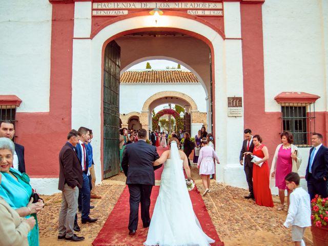 La boda de Antonio y Rocio en Mairena Del Alcor, Sevilla 3