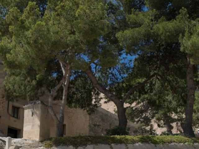 La boda de Néstor y Silvia en Elx/elche, Alicante 11