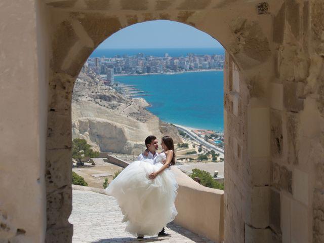 La boda de Néstor y Silvia en Elx/elche, Alicante 34