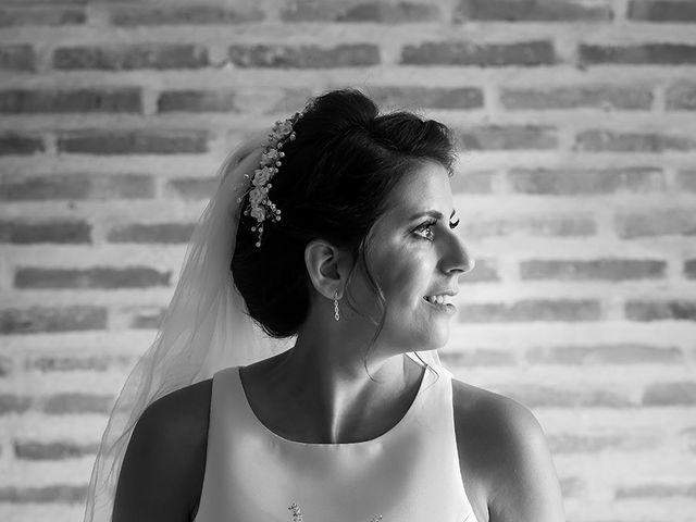 La boda de Alberto y Diana en Hornillos De Eresma, Valladolid 15