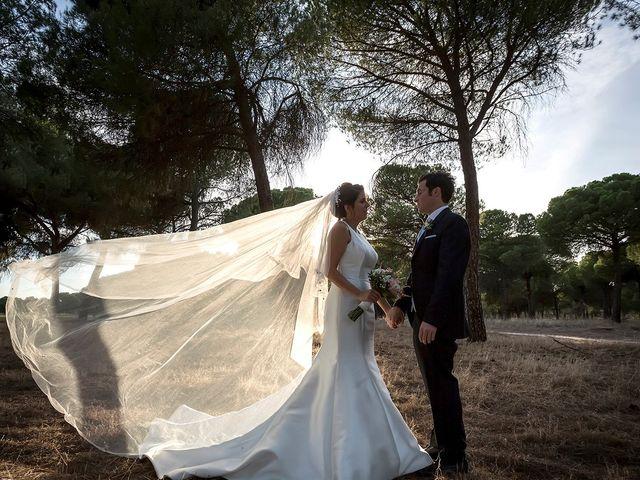 La boda de Alberto y Diana en Hornillos De Eresma, Valladolid 31