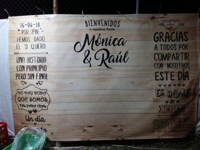 La boda de Raúl y Mónica en Bercial, Segovia 32