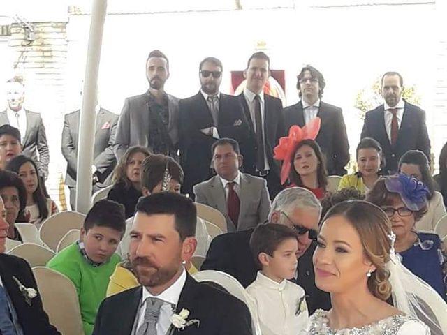 La boda de Raul y Beatriz en Torreperogil, Jaén 1