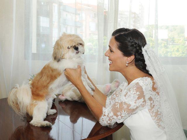 La boda de Triunfo y Beatriz en Plasencia, Cáceres 12