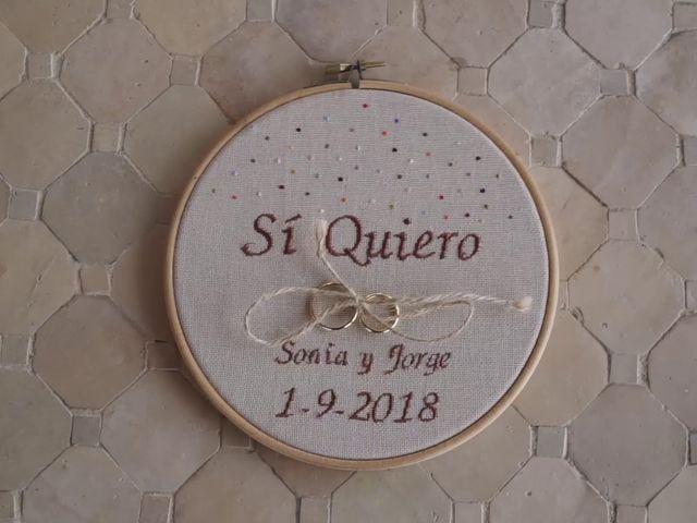 La boda de Jorge y Sonia en Torremocha Del Jarama, Madrid 9