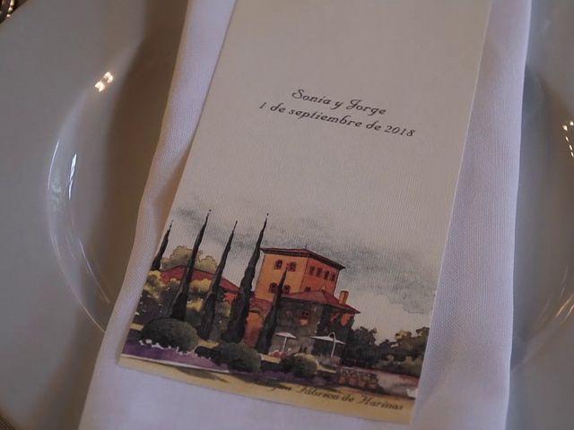 La boda de Jorge y Sonia en Torremocha Del Jarama, Madrid 25