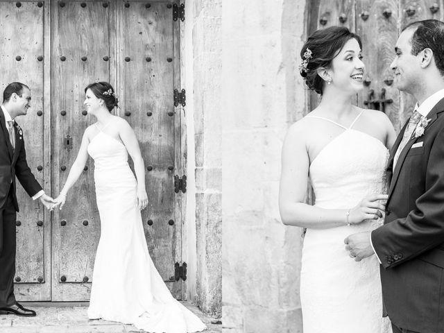 La boda de Adrés y Shara en Oviedo, Asturias 9