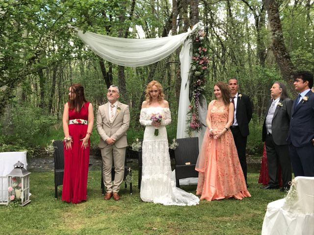 La boda de Pedro y Denica en Villacorta, Segovia 5