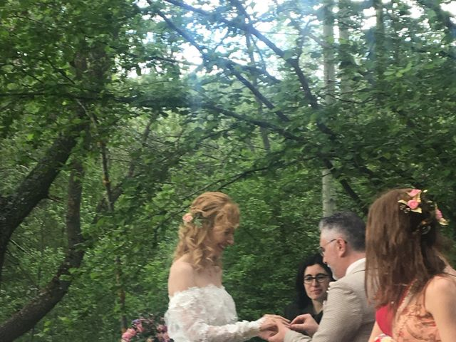 La boda de Pedro y Denica en Villacorta, Segovia 9