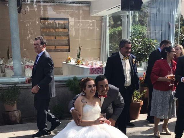 La boda de Luis Fernando y Soledad  en Móstoles, Madrid 13