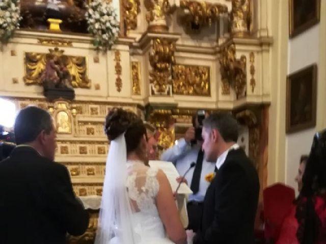 La boda de Luis Fernando y Soledad  en Móstoles, Madrid 17
