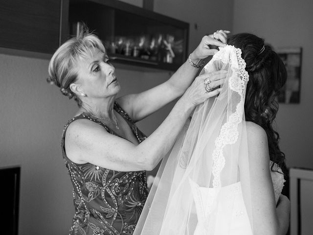 Matrimonio Jose Luis Repenning : Boda de rosa jose luis los cotos