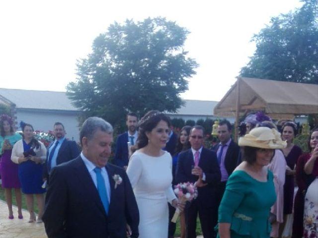 La boda de Alberto y Rocío en Gerena, Sevilla 3