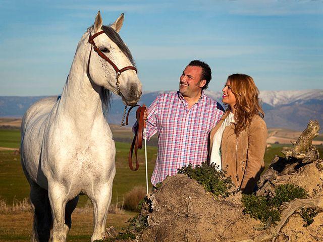 La boda de Jose Luis y Sandra en Madrona, Segovia 4