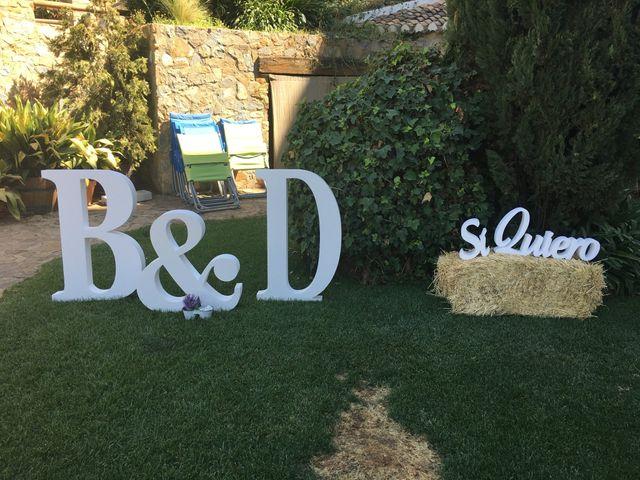 La boda de David y Belén  en Dilar, Granada 6