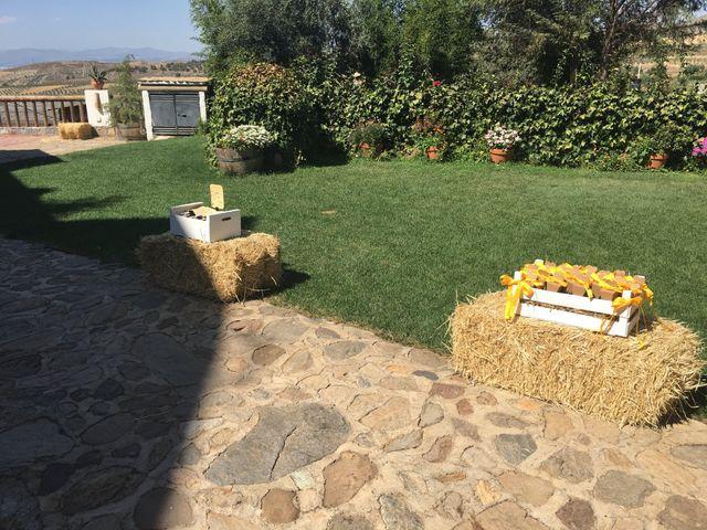 La boda de David y Belén  en Dilar, Granada 7