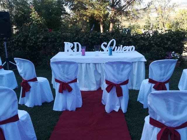 La boda de David y Belén  en Dilar, Granada 2