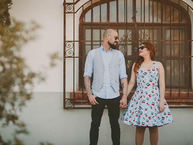 La boda de Mario y Viviana en Elx/elche, Alicante 7