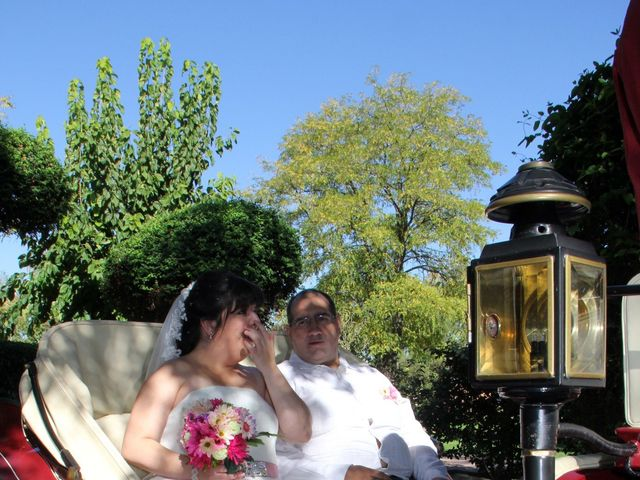 La boda de Miguel Ángel y Amparo  en Alcalá De Henares, Madrid 10