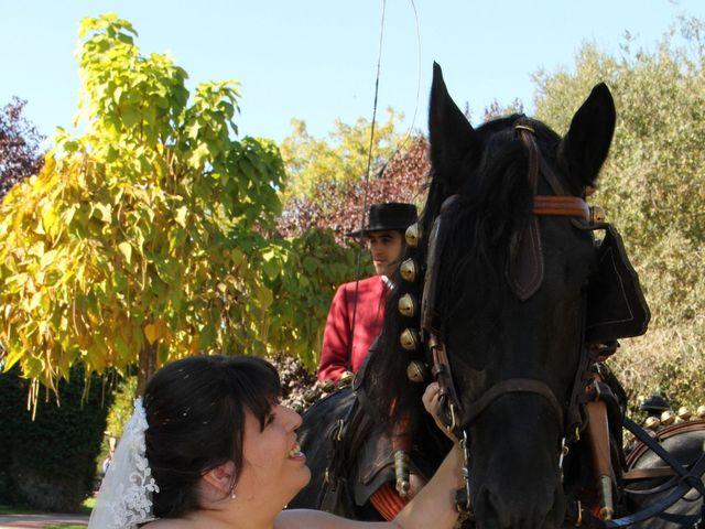 La boda de Miguel Ángel y Amparo  en Alcalá De Henares, Madrid 47