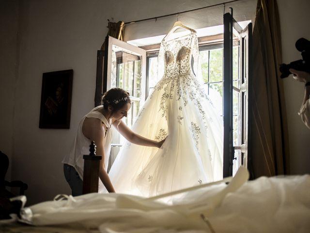 La boda de Andrei y Elena en Partida San Juan, Alicante 11