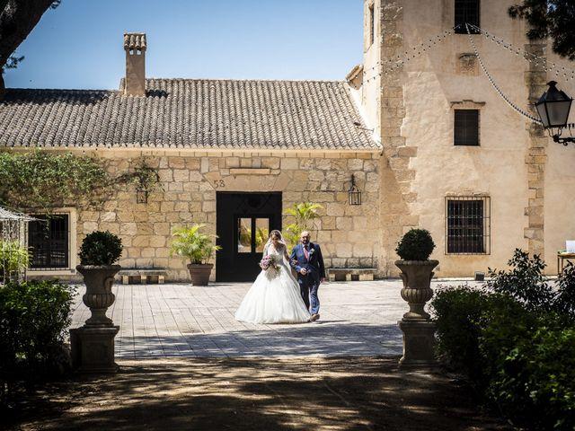 La boda de Andrei y Elena en Partida San Juan, Alicante 23
