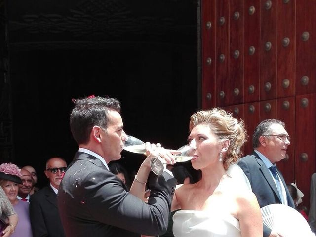 La boda de David y Cristina  en Cádiz, Cádiz 24