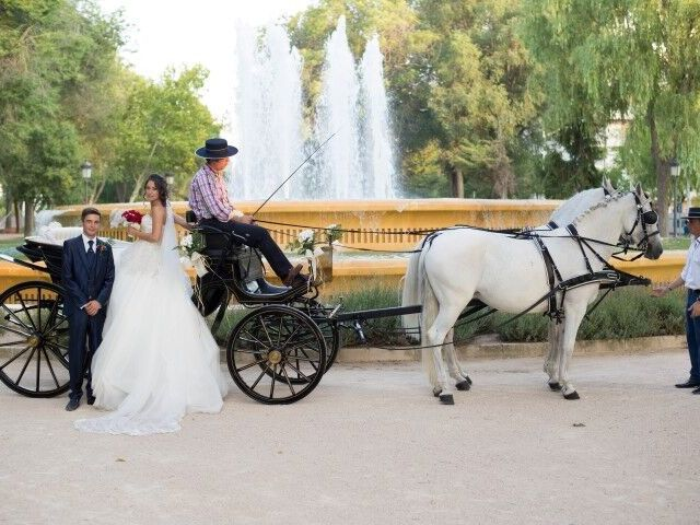 La boda de Alejandro y Gemma en Albacete, Albacete 10