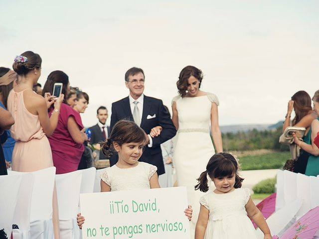 La boda de David y Verónica en Castrillo De Duero, Valladolid 9