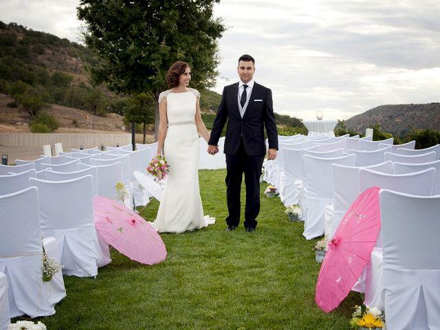 La boda de David y Verónica en Castrillo De Duero, Valladolid 14