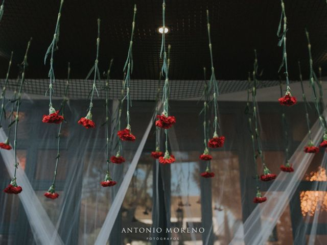 La boda de Dani  y Lydia  en Murcia, Murcia 39
