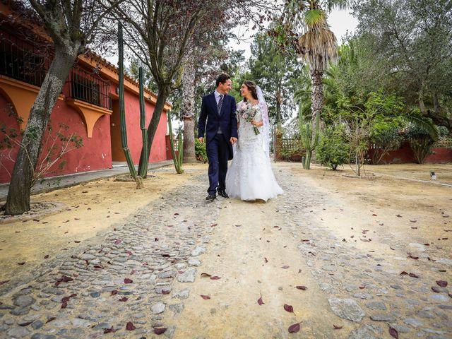 La boda de Rafa y Bridie en Jerez De La Frontera, Cádiz 26
