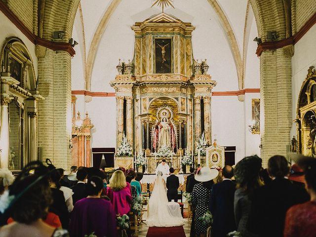 La boda de Alejandro y Alba en La Puebla Del Rio, Sevilla 37