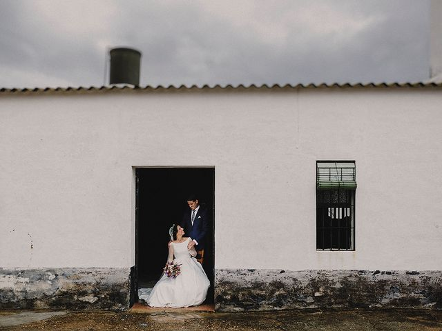 La boda de Alejandro y Alba en La Puebla Del Rio, Sevilla 45