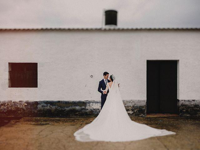 La boda de Alejandro y Alba en La Puebla Del Rio, Sevilla 47