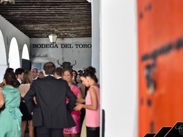 La boda de Borja y Rocío en Sanlucar De Barrameda, Cádiz 15