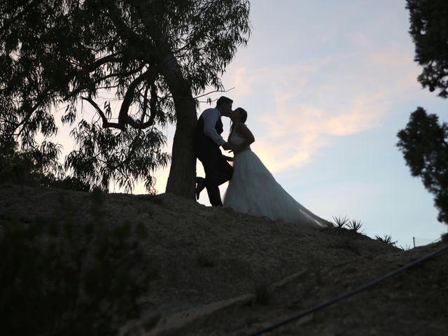 La boda de Alejandro y Olga en Elx/elche, Alicante 2
