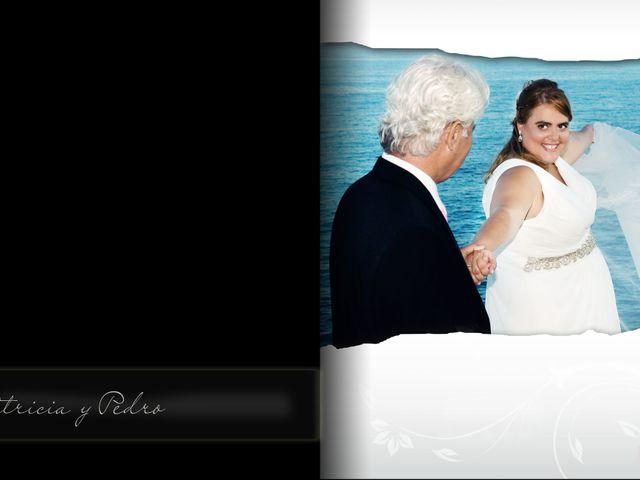 La boda de Pedro y Patricia  en Alacant/alicante, Alicante 4