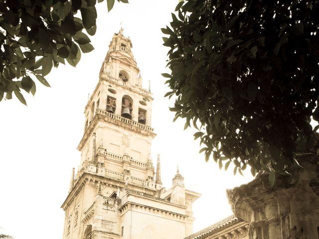 La boda de Mario y Dora en Córdoba, Córdoba 28