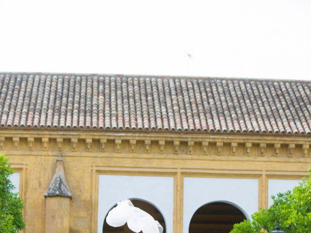 La boda de Mario y Dora en Córdoba, Córdoba 34