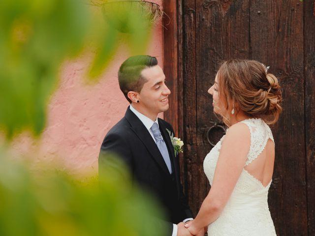 La boda de Rubén y Virginia en Puerto De La Cruz, Santa Cruz de Tenerife 17