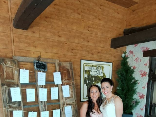 La boda de Dani y Lidia en Mansilla De Las Mulas, León 11