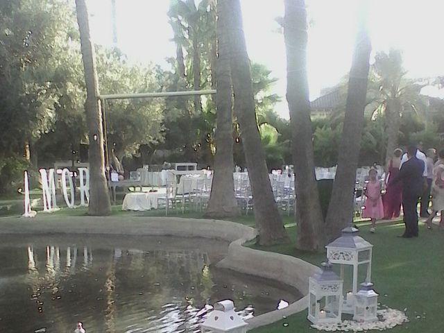La boda de Daniel  y Beatriz  en Puente Tocinos, Murcia 10