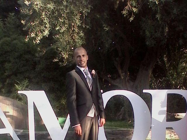 La boda de Daniel  y Beatriz  en Puente Tocinos, Murcia 11