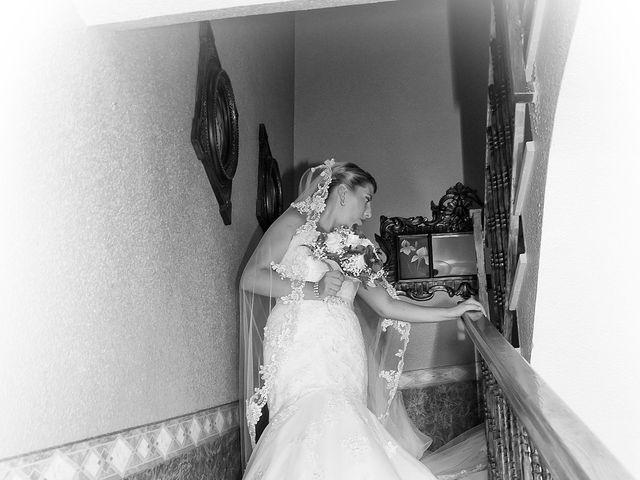 La boda de Ruben y Estefania en Las Cuatro Higueras, Almería 11