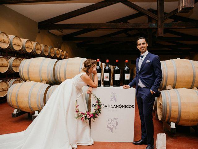 La boda de Javier y Elena en Pesquera De Duero, Valladolid 53